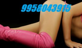Escorts Service Aerocity ✤✥✦995-8043-915✤✥✦ Escort Call Girls