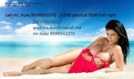 SHORT 1500 NIGHT 5000 Call Girls in Govindpuri 9599541070