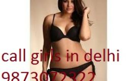 call girls in saket shot 2000 night 7000 call 9873072322