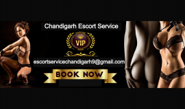 Chandigarh Escort Services